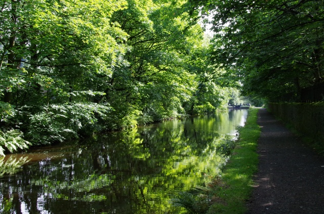 The canal walk at its most picturesque