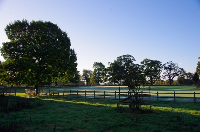 The village cricket pitch early morning