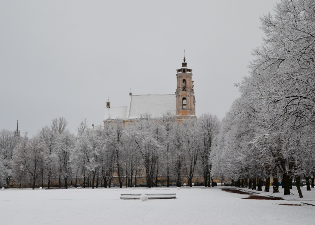 City park in deepest winter